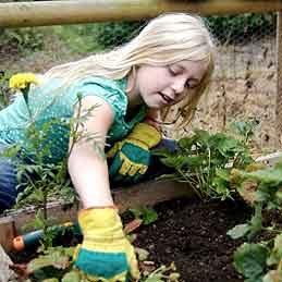 Genouillères pour jardiner