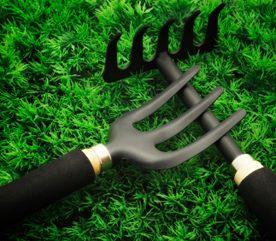2. Ramassez les feuilles mortes et les brindilles.