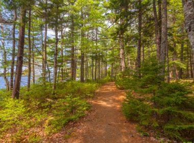 Parc national Kejimkujik, Nouvelle-Écosse