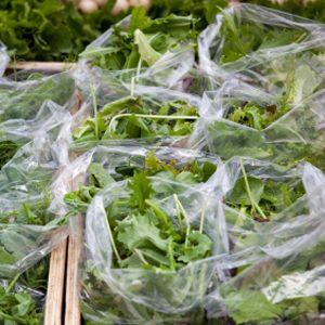2. Mettez la laitue dans un sac de plastique