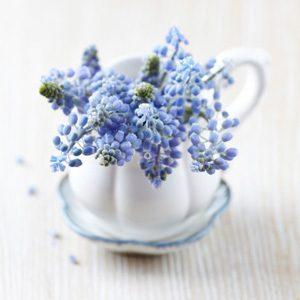 2. Garnissez vos pots de jolis fleurs