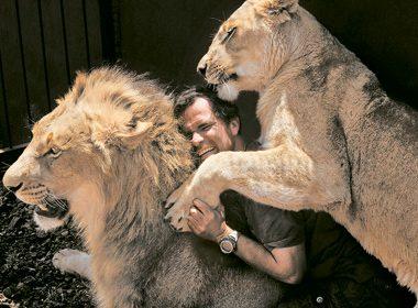 Prêt à tout pour sauver la vie des lions