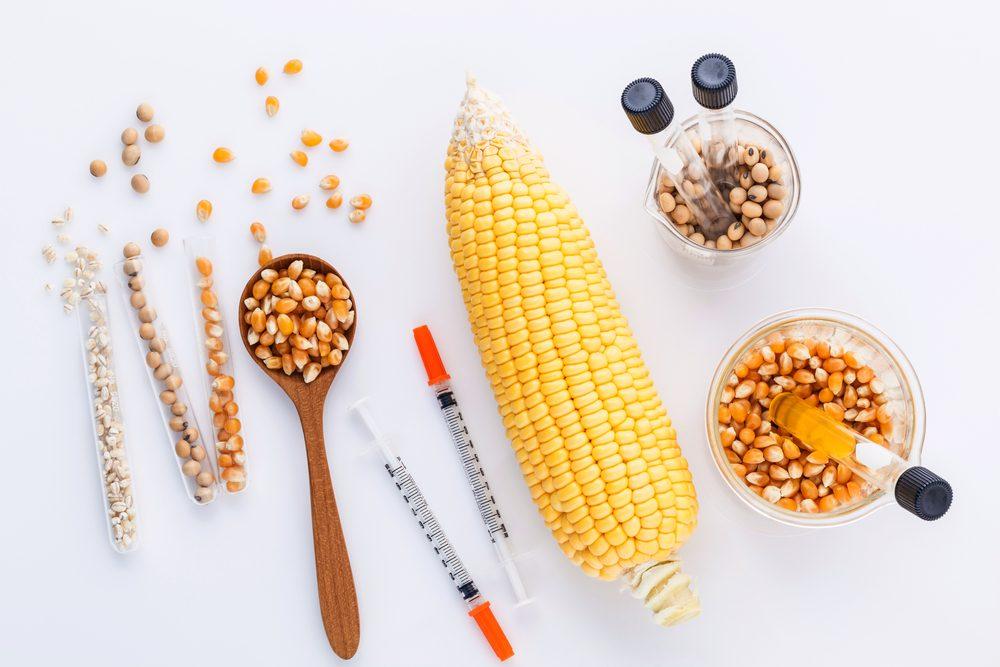 Les inquiétudes face aux OGM