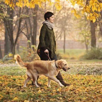 Marcher pour la longévité