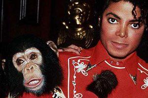 8. Bubbles (chimpanzé) : 2 millions