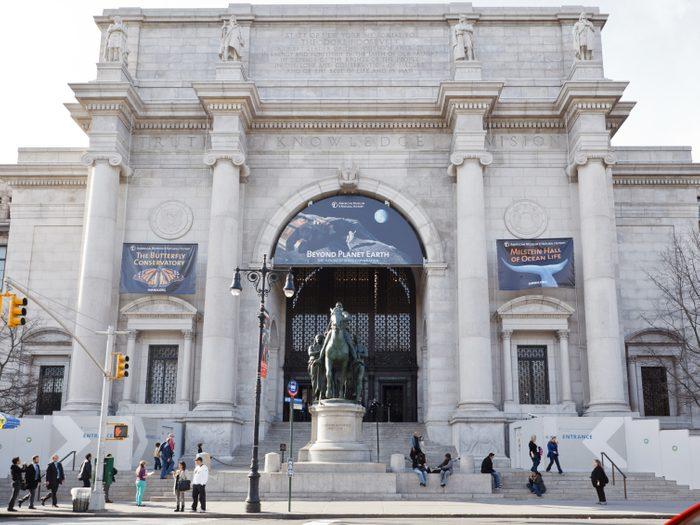 10. L'American Museum of Natural History: l'un des plus beaux musées de New York