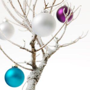 1. Faites la chasse aux branches.