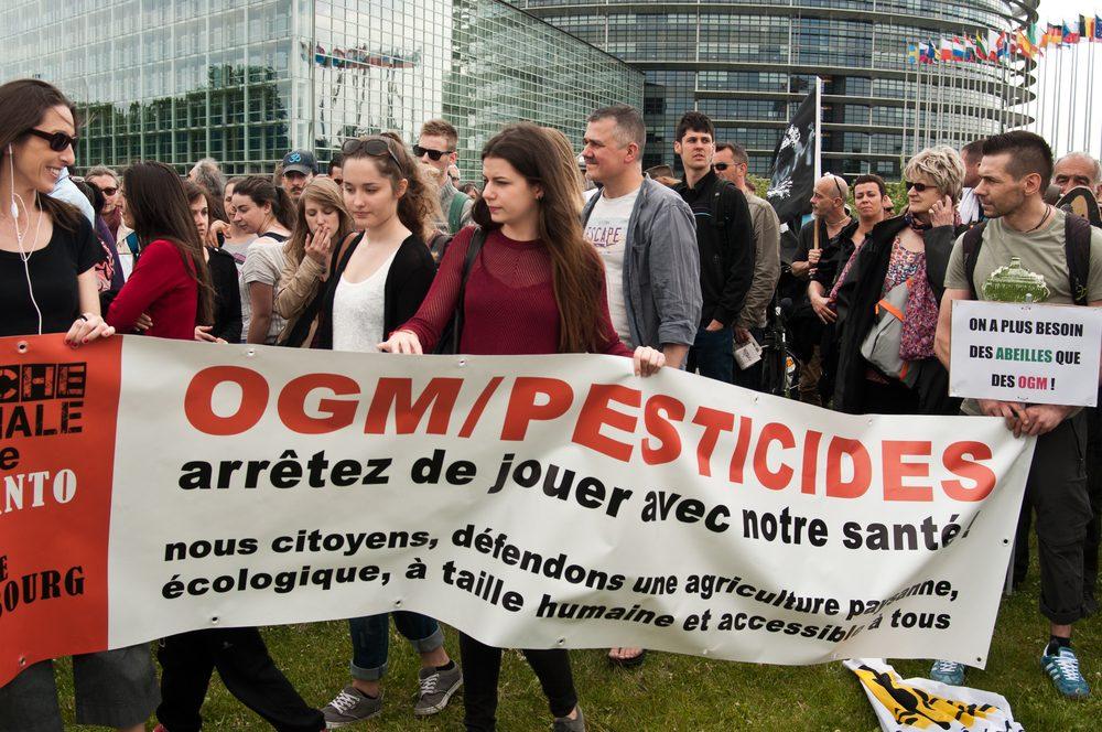 La méfiance à l'égard des OGM