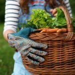 3 gestes pour diminuer votre glycémie et prévenir le diabète
