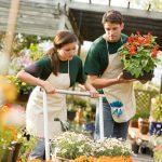 8 choses à savoir avant d'acheter vos plantes