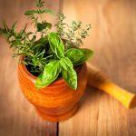 4 astuces pour faire pousser des plantes comestibles