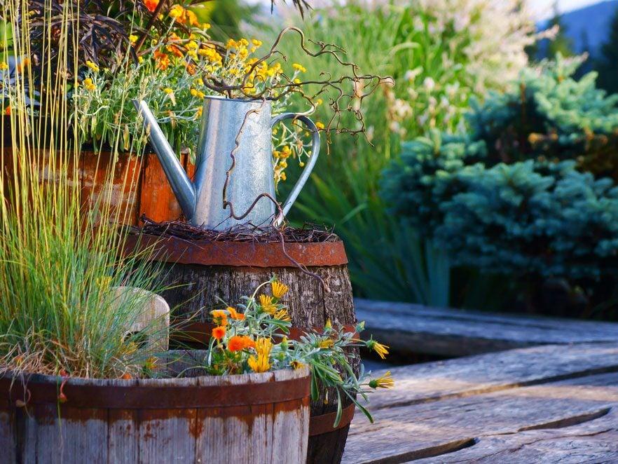 Que cultiver pour un balcon ou une terrasse?