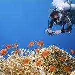 Les 6 meilleurs endroits pour apprendre la plongée
