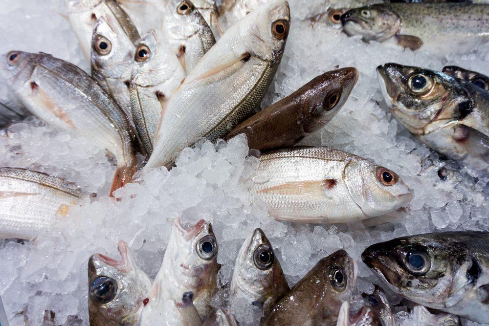 Un mets traditionnel et original : le poisson cru inuit
