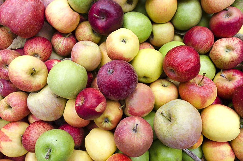 Pour faire baisser son taux de cholestérol, mangez des pommes.