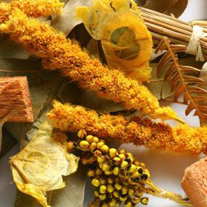 3. Pot-pourri maison de verveine citronnelle