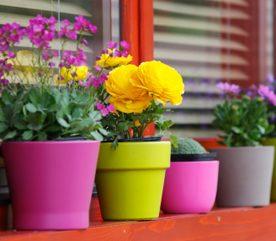 5 trucs faire avec les pots fleurs. Black Bedroom Furniture Sets. Home Design Ideas