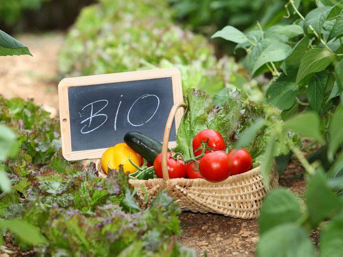 Les bienfaits des produits bios sur la santé