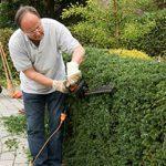 Jardiner avec de meilleurs émondoirs