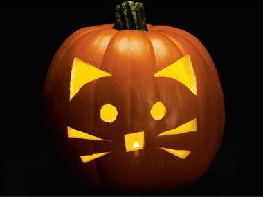 3e motif de pochoir pour citrouille: les moustaches de chat