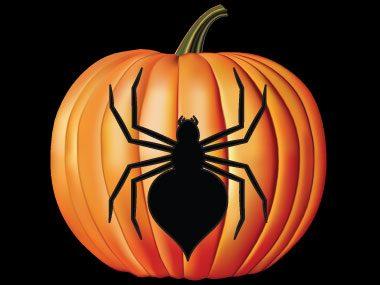 11e motif de pochoir pour citrouille: l'araignée effrayante