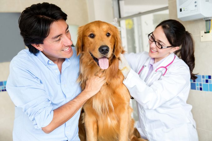 Quand vacciner mon animal de compagnie?