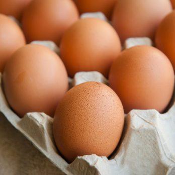 Quoi faire avec des coquilles d'œufs: 7 trucs inusités