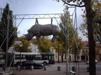 Le rhinocéros suspendu