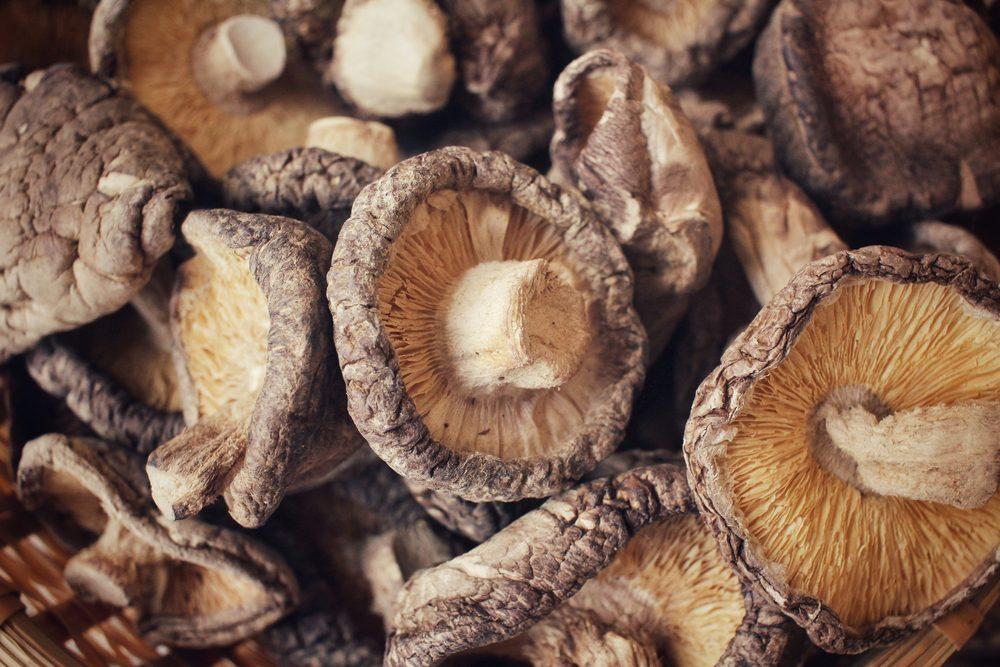 Le shiitake, un champignon aux bienfaits prometteurs