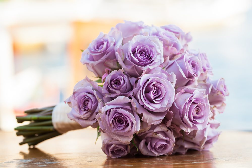 Lavender roses for love at first sight