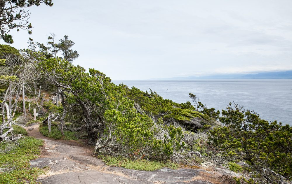 6. La West Coast Trail, Colombie-Britannique