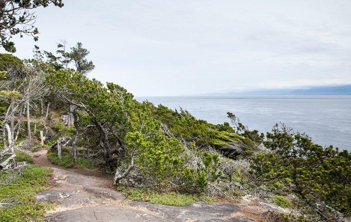 6. La West Coast Trail, Colombie-Britannique