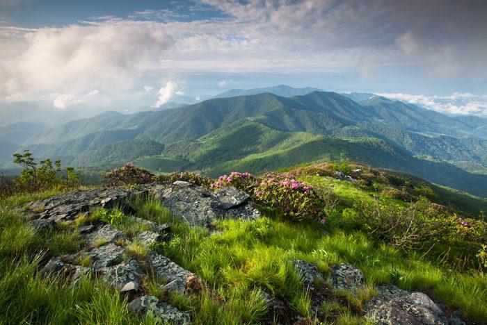L'Appalachian Trail est l'une des randonnées les plus populaires au monde.