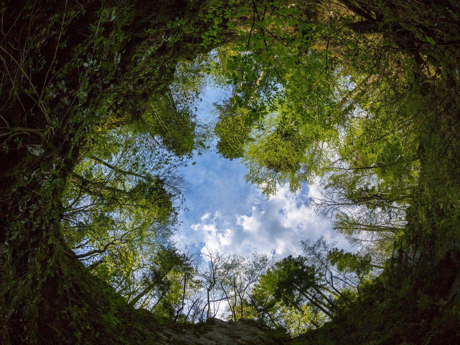 Slovénie - Les grottes de Skocjan