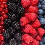 Antioxydants: aliments ou suppléments?