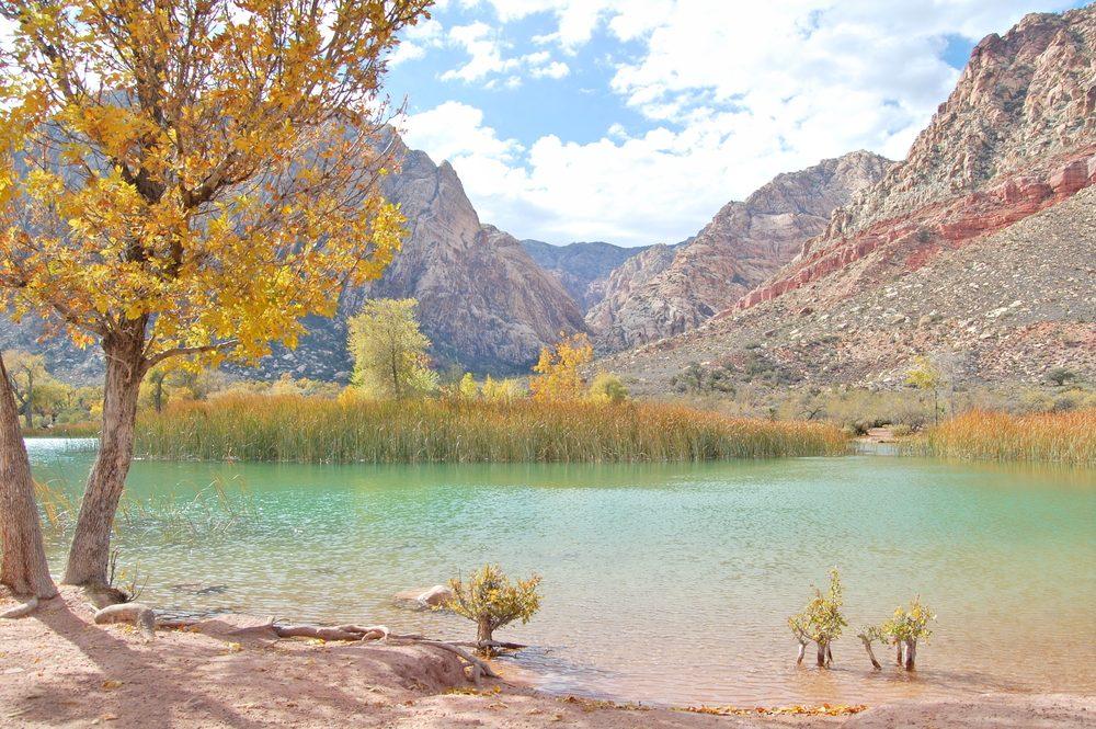 5. Le ranch de Spring Mountain: Un site splendide à proximité de Las Vegas
