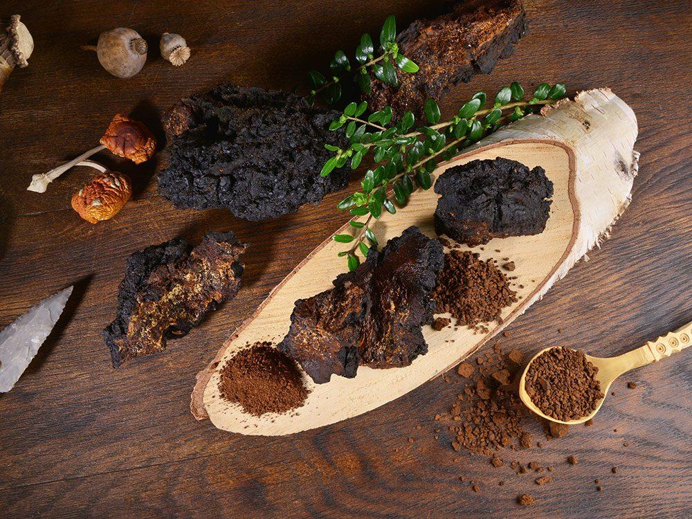 Le champignon chaga est un superaliment anti-inflammatoire.