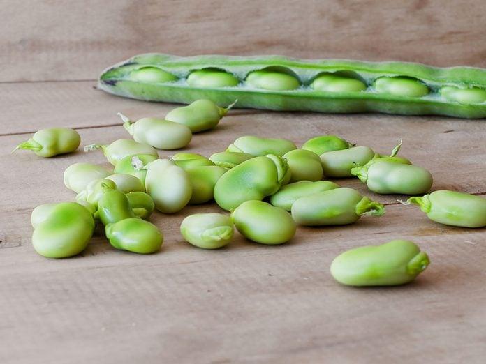La fève de Lima est un superaliment de qualité.