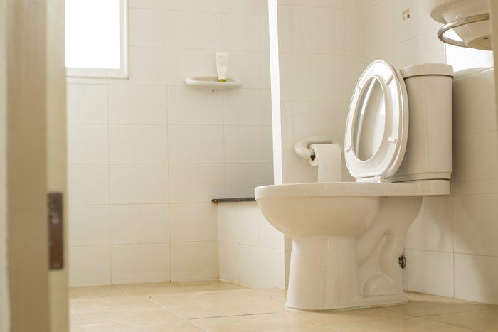 Optez pour une toilette plus écologique et économique si vous rénovez votre salle de bain.