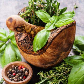 Santé : top antioxydant des fines herbes et épices
