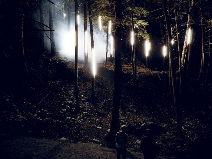 Foresta Lumina, une activité très populaire à Coaticook