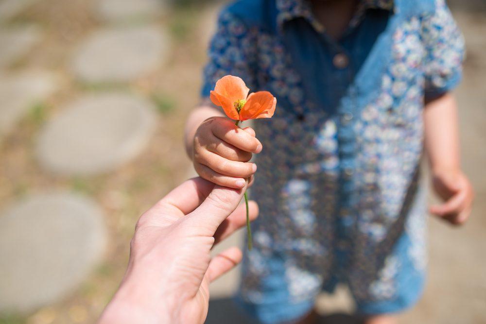 La gratitude : un moyen efficace pour renforcer le sentiment de patience