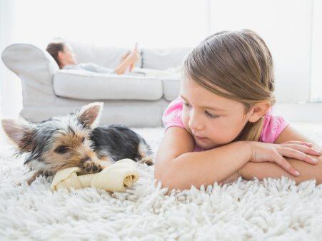 4.Détachez tapis et moquette
