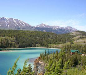 Yukon Bay: un paradis nordique