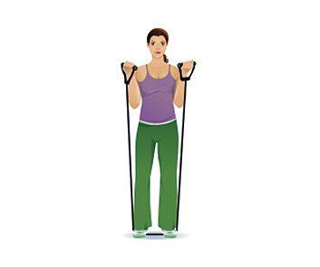 5. Flexion du biceps