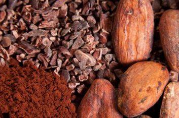 7. Le cacao