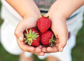 Mangez plus de fraises