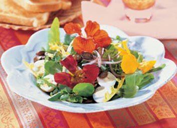 Salade d'herbes sauvages aux graines de citrouille