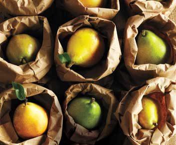 Fruits cuits