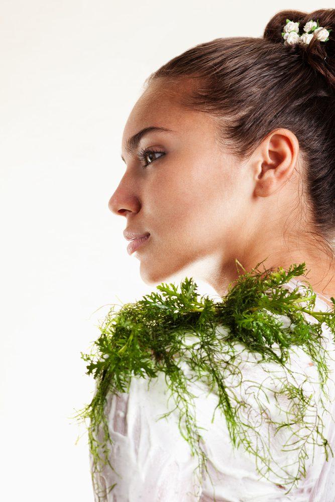 Les algues bonnes pour votre peau